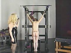 BDSM, Blonde, Brunette, Latex, Mature
